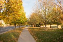fall-Lowryfacebook